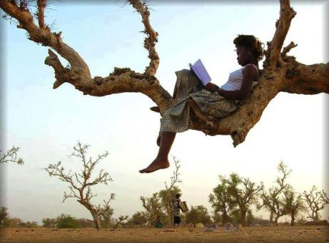 reading-in-a-tree